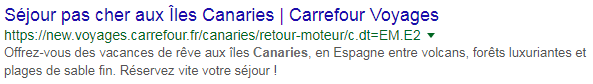 Meta description incitative Carrefour Voyages