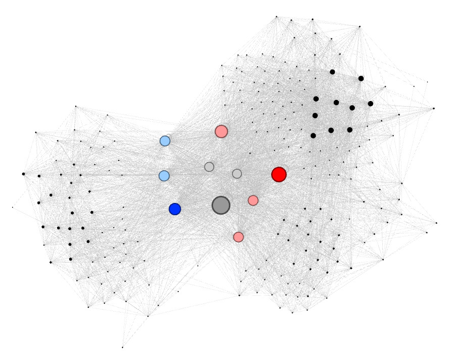 Maillage interne Gephi visualisation 1