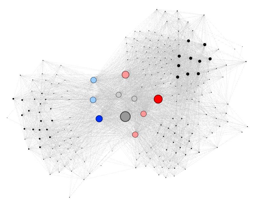 Maillage interne Gephi visualisation 1