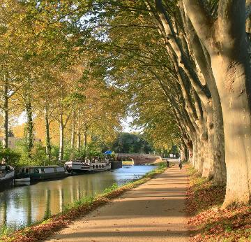 Canal du Midi à Toulouse en Occitanie