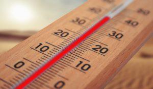 Prise de température de son site web